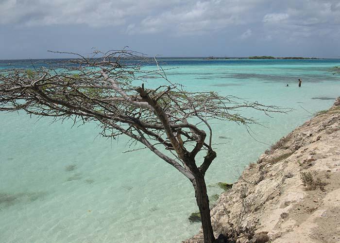 northern coast aruba.jpg