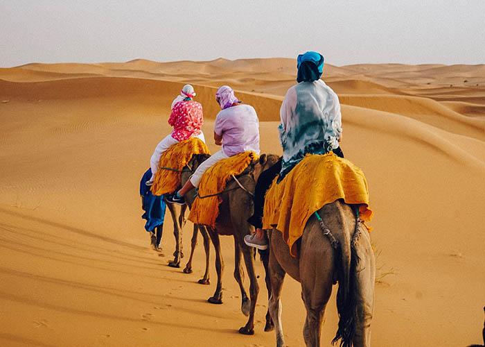 Camel trekking morocco.JPG