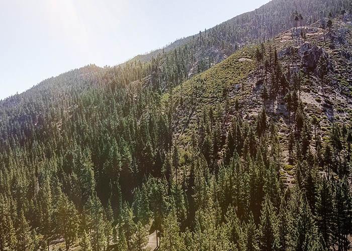 north lake tahoe bike trails